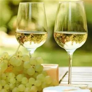 迪琴莊甜白葡萄酒誠邀加盟