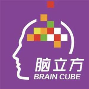 脑立方教育加盟