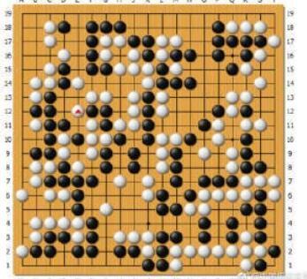 马晓春围棋加盟