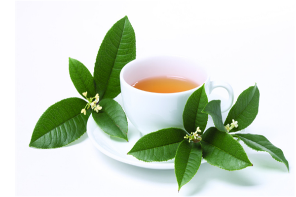 南壶香茗茶加盟