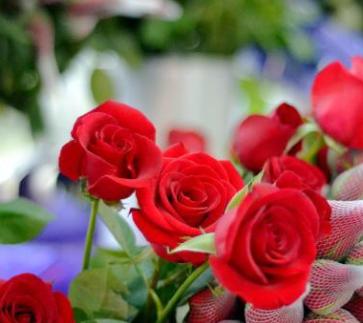 花之苑鲜花加盟