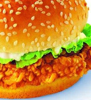 联盟时代汉堡炸鸡加盟