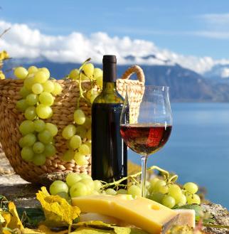 波尔多葡萄酒加盟