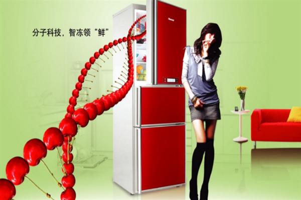 帝度冰箱加盟