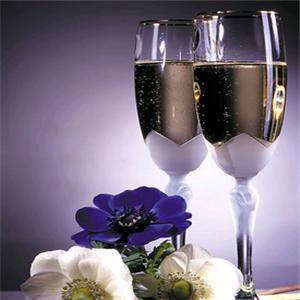 骊龙葡萄酿酒加盟