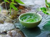 安吉茶加盟
