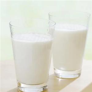 廣州醇鮮然羊奶加盟