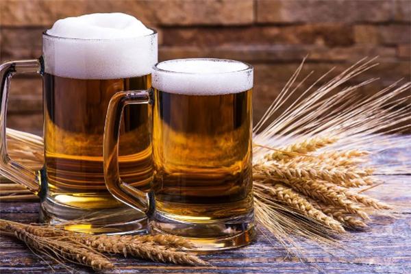百谷精釀啤酒加盟