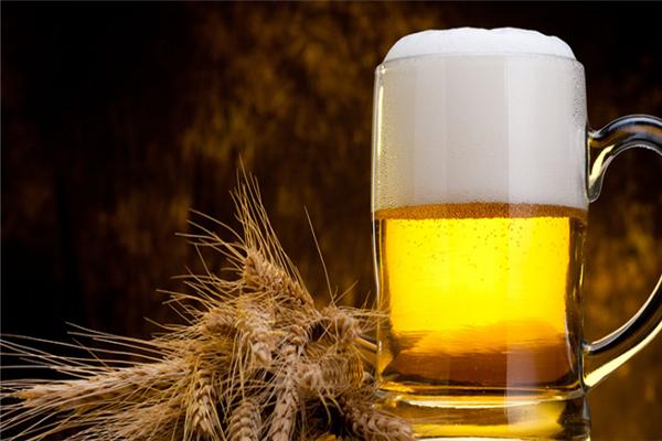 洛克啤酒加盟