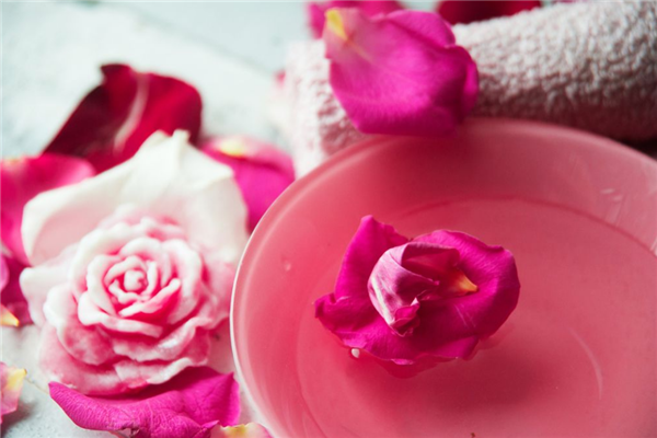 玫瑰花鮮素加盟