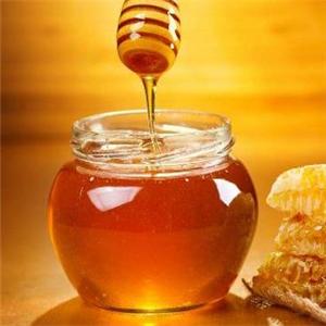 蕊源蜂業加盟