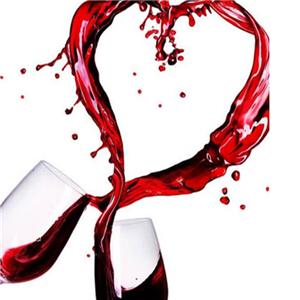 进口红酒加盟
