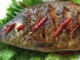魚酷烤魚加盟