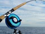 daiwa漁具加盟