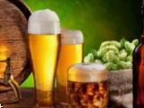 怒江啤酒加盟