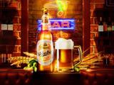 汉德啤酒加盟