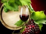 玛歌红酒加盟